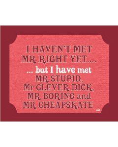 Plaque - Mr Right