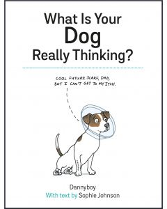 What Is Your Dog Really Thinking