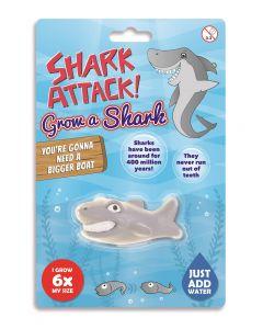 GROW A SHARK