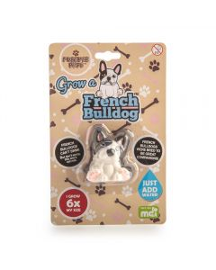 GROW A FRENCH BULLDOG