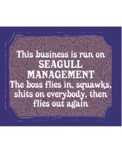 PLAQUE - SEAGULL MANAGEMENT