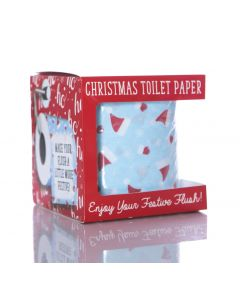 TOILET ROLL - SANTA HAT